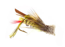 Single fly-fishing grasshopper fly Stock Photos
