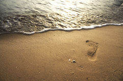 Single Foot Print at The Beach Stock Image