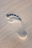Single Footprint Royalty Free Stock Photo