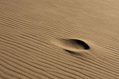 Single Footprint in Rippled Sand Royalty Free Stock Photography