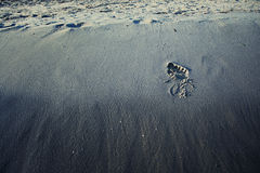 Single footprint in the sand Royalty Free Stock Images