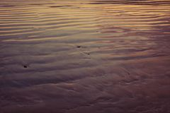 Single footprint on wet rippled sand at seacoast.  Royalty Free Stock Images