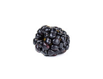 Single fresh blackberry isolated on white Stock Photography