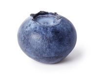 Single fresh blueberry Royalty Free Stock Photos