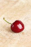 A single fresh cherry, close-up Stock Photography