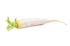 Single fresh daikon radish isolated on the white. Background Stock Photography