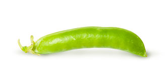 Single fresh green peas sugar in the pod. Isolated on white background Royalty Free Stock Image