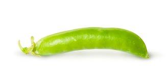 Single fresh green peas sugar in the pod Royalty Free Stock Image