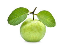 Single fresh guava fruit with green leaf isolated on white. Background Stock Photo