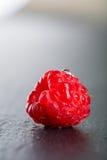 Single fresh juicy wet rapsberry Stock Photo