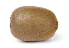 Single fresh kiwi fruit Stock Photography