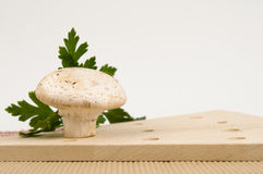 Single fresh mushroom with parsley Royalty Free Stock Photography