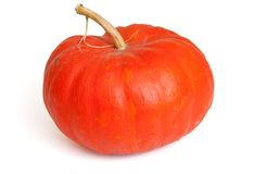 Single fresh pumpkin Stock Images