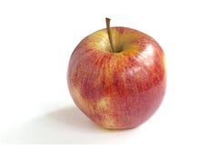 Single fresh red green apple Royalty Free Stock Image