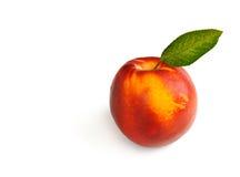 Single fresh ripe nectarine Stock Photos