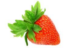 Single fresh strawberries. Isolated Stock Photography