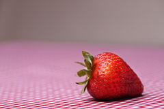 Single Fresh Strawberry On Red Gingham Tablecloth. Single fresh strawberry sitting on red gingham tablecloth Royalty Free Stock Photography