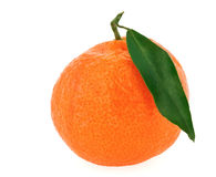 Single fresh tangerine with green leaf Royalty Free Stock Image