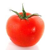 Single fresh tomato Stock Photos
