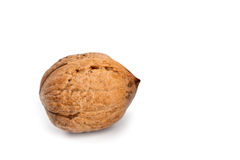 Single fresh walnut Stock Photos