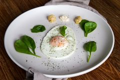 Fried egg in egg shape with healthy garnish Royalty Free Stock Photos
