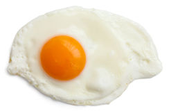 Single Fried Egg Isolated Royalty Free Stock Photography