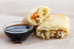 Single fried vegetable spring roll on wax paper. Stock Photos
