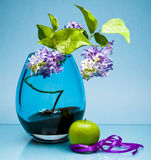 Single fruit and flowers in glass vase on blue Stock Image