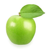 Single a green apple Stock Image