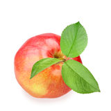 Red apple with three green leaf Stock Photo