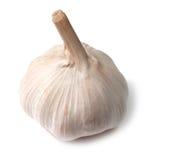 Single Garlic Bulb On White Stock Photography