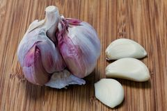 Single garlic with cloves on the board Stock Image
