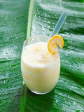 Single glass of chilled banana smoothie. High angle view of a single glass of chilled banana smoothie or blended cocktail served on a banana frond with copyspace stock images