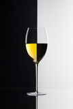 Single glass of wine   on black and white background Stock Photos
