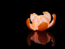 Single glowing tangerine with reflection stock images