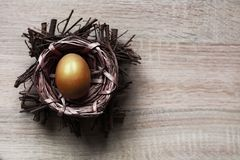 Single golden color egg in the nest stock photography