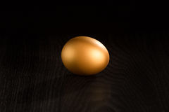Single golden egg Stock Photo