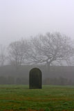 Single gravestone in a spooky graveyard Stock Photo
