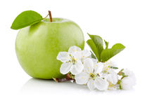 Single Green Apple with Leaf and Flowers  Royalty Free Stock Photography