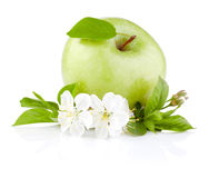 Single Green Apples with Leaf and Flowers Royalty Free Stock Images