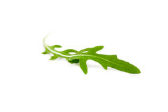 Single green arugula leave isolated on white background Royalty Free Stock Photos