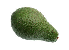 Single green avocado. Stock Images