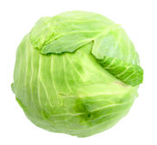 Single green cabbage with dew Stock Photo
