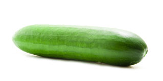 Single Green Cucumber. Isolated on White stock images