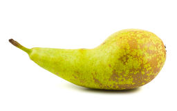 Single green ripe pear Royalty Free Stock Photography