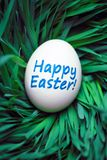 Happy Easter egg hidden in grass royalty free stock photography