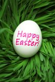 Single Happy Easter egg hidden in grass stock images