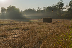 Single Hay Bale In Field Early Morning Sun Rising Royalty Free Stock Photos