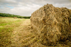 A Single Hay Bale Royalty Free Stock Photos