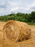 Single haycock on the field. Royalty Free Stock Photography